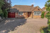 Bungalow to rent in Crabtree Lane, Harpenden...