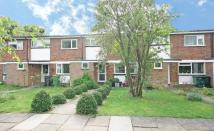 Shelley Court Terraced house to rent