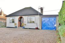 Detached Bungalow for sale in Norwich Road, Aylsham...