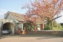Bungalow in Wroxham Road, Sprowston...