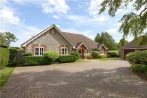 Detached Bungalow for sale in Old Rectory Drive...