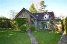Detached home for sale in The Lane, Chichester...