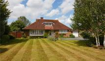 Detached Bungalow for sale in Westgate, Chichester...