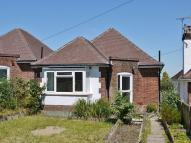 Detached Bungalow for sale in Hastings Road, Pembury...