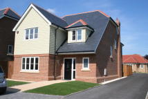 5 bedroom new home for sale in Bannister Green, Felsted...