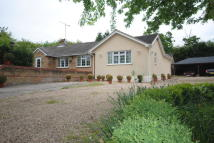 4 bed Detached Bungalow in De Beauvoir Chase...