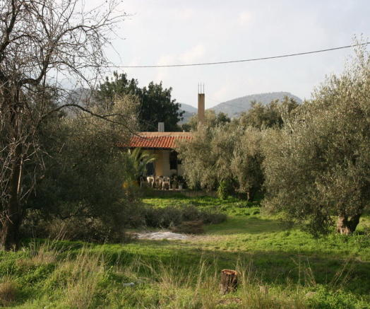 House in spring