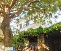 Apartment for sale in Kritsa, Lasithi, Crete