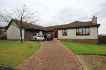 Detached Bungalow in Muirhouse Park, Bearsden...