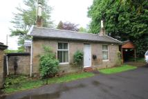 2 bedroom Detached Bungalow in Antermony Road...