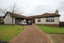Bungalow for sale in Muirhouse Park, Bearsden...