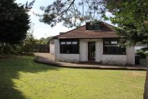 4 bed Detached Bungalow for sale in GRAY DRIVE, Glasgow, G61
