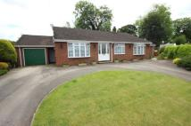 Bungalow for sale in Springfield Grove...