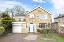 5 bedroom Detached house in Park House Green...