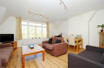Rastell Avenue Flat to rent