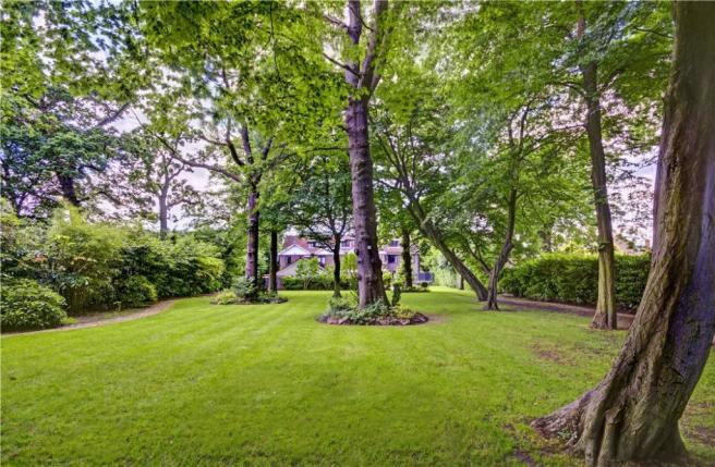 Hampstead: Garden 4