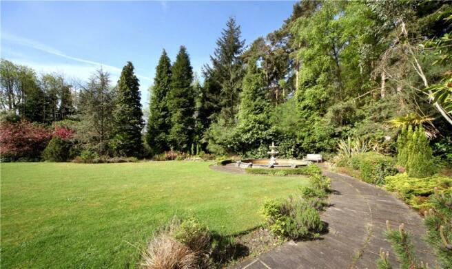 Windlesham: Garden
