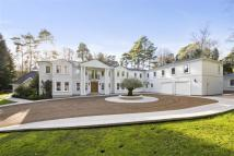 7 bed Detached property to rent in Abbotswood Drive...