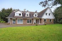 5 bed Detached house to rent in Coombe Wood Road...