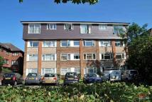 Rectory Road Flat to rent