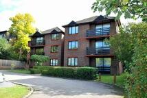 Flat to rent in Rectory Road, Beckenham...