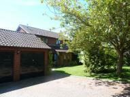 4 bed Detached home to rent in The Poplars, Beck Row