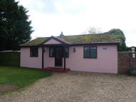 Detached Bungalow to rent in The Grove, Beck Row
