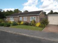 3 bedroom Detached Bungalow for sale in Wingfield Road...