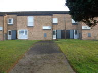 Terraced home to rent in Earls Field, Lakenheath