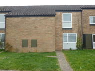Terraced house in Elm Walk, Raf Lakenheath