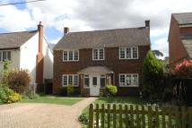Detached property to rent in Pine Grove, Windlesham...