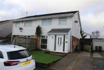 Bryn Rhedyn semi detached house for sale