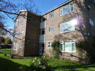 Flat to rent in Sherwood Chase...