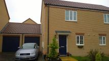 2 bedroom semi detached house to rent in Goodwood Drive, BOURNE