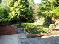 3 bed property to rent in Holden Road...