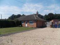 Semi-Detached Bungalow to rent in Highwood Road, Gazeley...