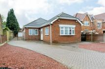 Detached Bungalow in Lower Rainham Road...