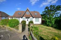 property to rent in St Edmunds Avenue...