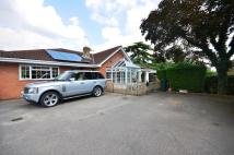 Bungalow to rent in Kingsend, Ruislip...