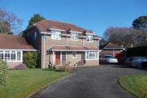 4 bedroom Detached house in BROCKENHURST