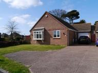 Detached Bungalow to rent in Manor Gardens, Hopton