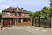 7 bedroom home in Hendon Avenue...