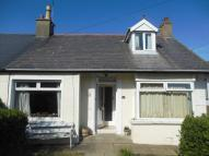 semi detached house in Hazeldene Gardens, Bangor