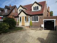Detached property to rent in Beech Avenue, Ravenshead...