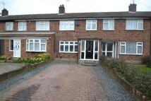 Frinton Road house to rent