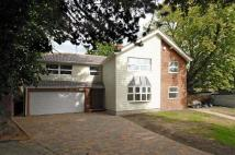 Hardwick Grove Detached house for sale