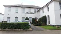 2 bed Apartment in The Cedars, Sherwood...