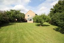 3 bed Detached property for sale in Walnut Close, Stretton