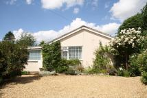 3 bed Detached Bungalow for sale in Orchard Way...