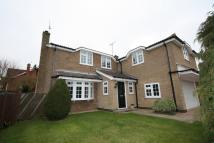 5 bedroom Detached home in Kings Road...